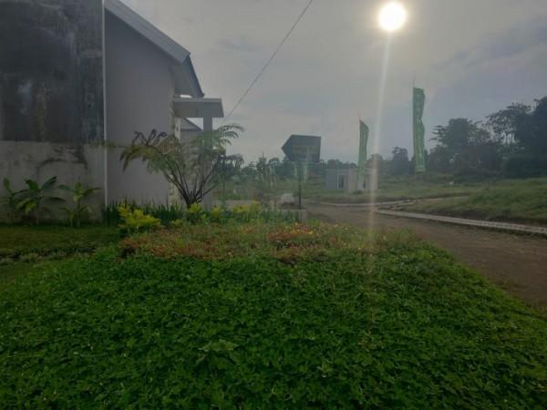 Perumahan Taman Tirta, perumahan dengan lingkungan bersuasana hijau. Nampak Taman hijau yang dibuat disekitaran perumahan (Ist)