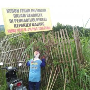 BUMDes untuk Menyelesaikan Konflik Petani Jeruk dengan Pemdes Selerojo Kapan Dibentuk?
