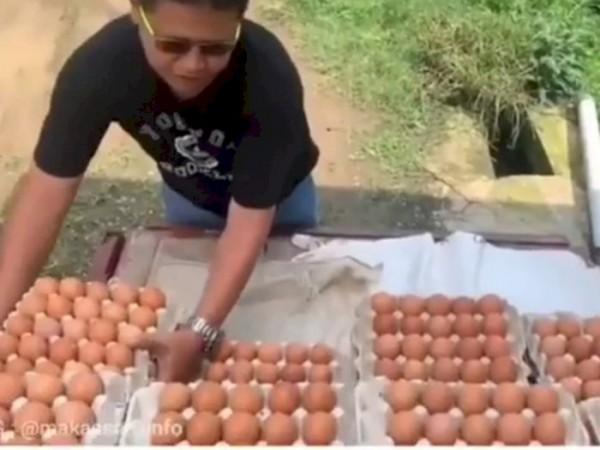 Viral Aksi Peternak Buang Telur ke Sawah karena Kecewa Harga Makin Anjlok