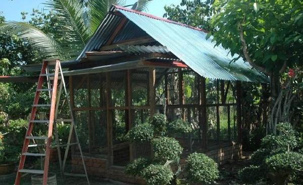 Aviary Terbesar di Dunia Ada di Indonesia, Pemiliknya Bukan Irfan Hakim atau Alshad Ahmad, Tapi Orang Desa ini