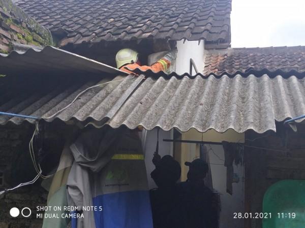 Petugas ketika mengevakuasi sarang lebah sesaat sebelum mendapatkan sengatan, Kamis (28/1/2021). (Foto: PPK Kabupaten Malang for JatimTIMES)