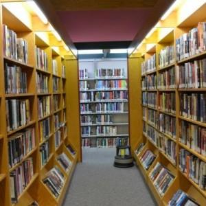 Tarik Minat Baca, Berikut Karakteristik Perpustakaan yang Wajib Diketahui