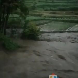 Debit Air Sungai Konto di Pujon Meluber Ke Pematang Sawah Milik Warga Hingga ke Jalan