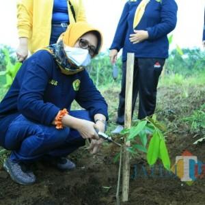 Bersatu dengan Alumni Unej Wabup Bunda Indah Hijaukan Bumi Perkemahan Glagah Arum