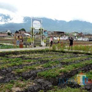 Pemkab Malang Dorong Setiap Desa Tingkatkan Ekonomi melalui Ini