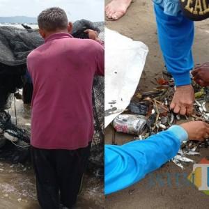Bangun Kekompakan, Perangkat Desa Kalibatur Tangkap Ikan di Pantai Sine