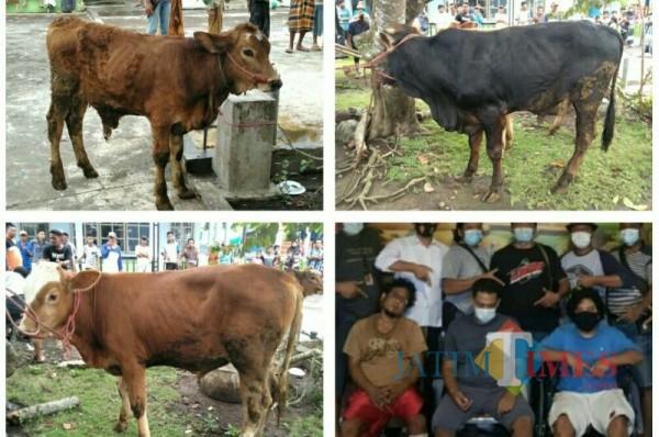 Tiga pelaku yang berhasil ditangkap dan barang bukti 3 ekor sapi (Foto : Moch. R. Abdul Fatah / Jatim TIMES)