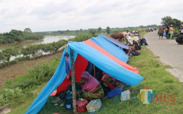 Kondisi pengungsi di tanggul Sungai Brantas Desa/Kecamatan Bandar Kedungmulyo, Jombang. (Foto : Adi Rosul / JombangTIMES)