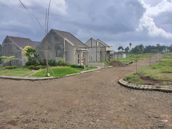 Situasi lingkungan Taman Tirta yang nampak asri dengan kehijauan (ist)