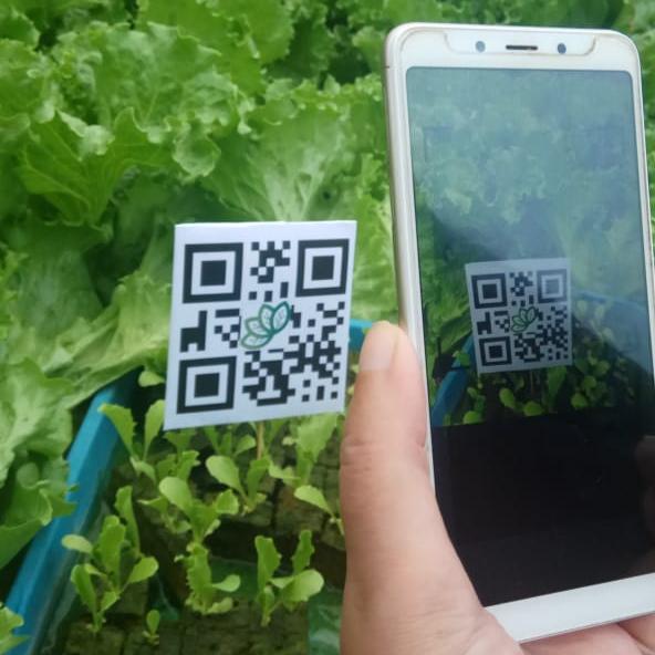 Ilustrasi barcode untuk mengakses aplikasi Kebun Pintar. (Foto: Istimewa)