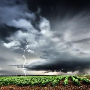 Puncak Musim Hujan, BPBD Blitar Imbau Masyarakat Waspadai Cuaca Ekstrem