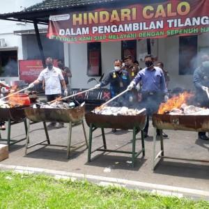 45,78 Gram Ganja Dimusnahkan, Kabupaten Mang Masih Dihantui Peredaran Narkoba
