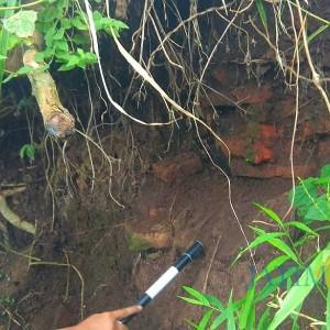 Lagi, Struktur Batu Bata Kuno Ditemukan di Bondowoso