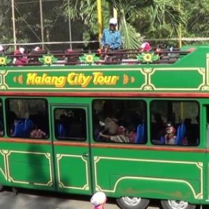 Bus Macito Kapan Beroperasional Lagi?