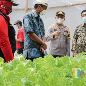 Kelurahan Banjarmlati Zona Hijau, Kapolres Dipameri  Budidaya Sayuran Hidroponik