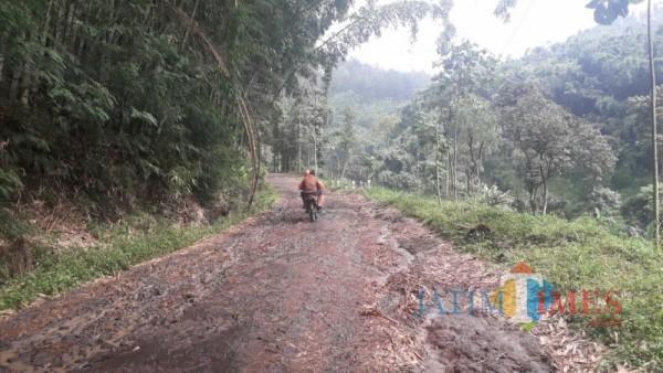 Kondisi Jalan menuju Dusun Brau, Desa Gunungsari, Kecamatan Bumiaji, Kota Batu, Sabtu (13/3/2021) (foto: Mariano Gale/ JatimTIMES)