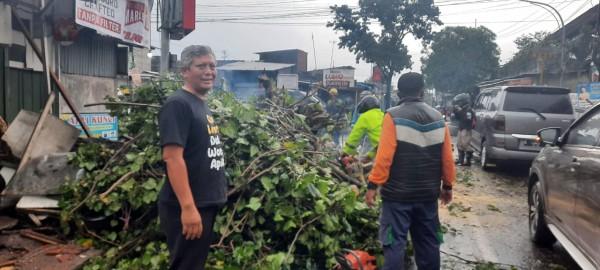 Wakil Ketua DPRD Kota Malang Asmualik (baju hitam) saat ikut membantu pembersihan pohon tumbang akibat hujan lebat di Kota Malang. (Foto: Istimewa).