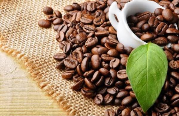 ilustrasi kopi (Foto: Istimewa)