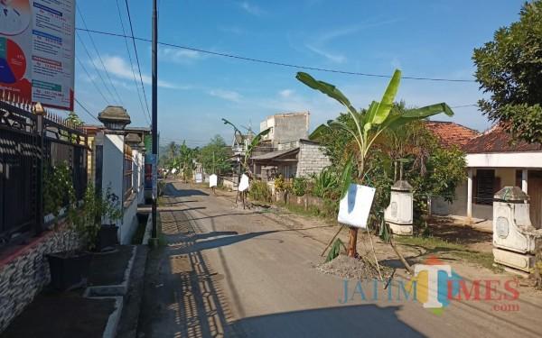 Pohon pisang yang tumbuh di tengah aspal rusak di desa Sumberagung (Foto :Istimewa / Tulungagung TIMES)