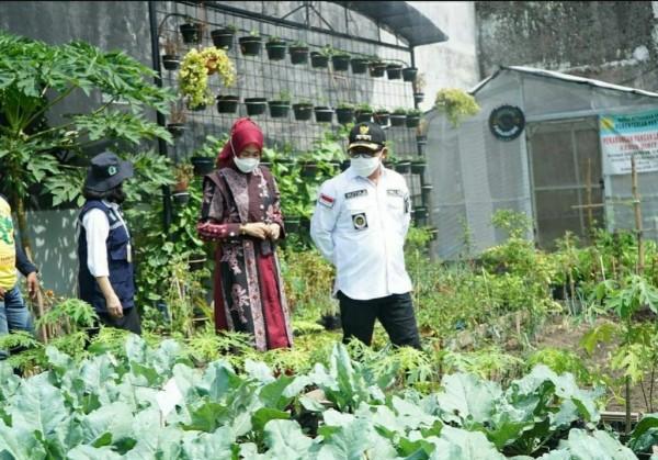 Wali Kota Malang Sutiaji (baju putih) saat meninjau salah satu wilayah yang menerapkan Urban Farmin di Kota Malang. (Foto: Instagram @pkkkotamalang).