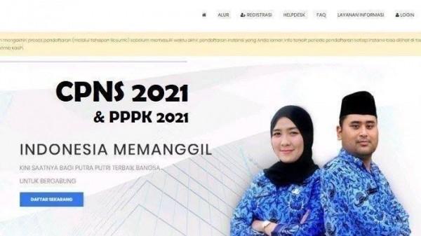 CPNS 2021 (Foto: tribunnews)
