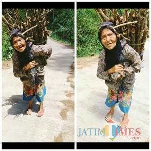 Wanita Lansia Ini 3 Kali Sehari Jalan Kaki Berkilo-kilo Keluar Masuk Hutan dengan Bawa Beban Berat