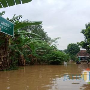 Akibat 2 Sungai Meluap, Banjir Rendam 12 Desa di Jombang