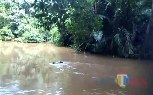 Air besar yang keluar dari telaga Buret (Foto : Video Karsi Nerro / TulungagungTIMES)