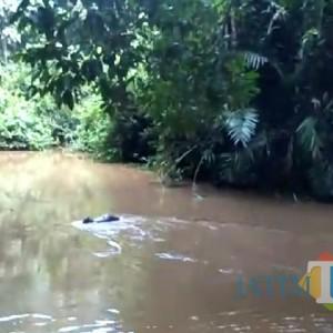 Tak Ada Hujan, Paska Gempa Telaga Buret di Tulungagung Keluarkan Air Besar