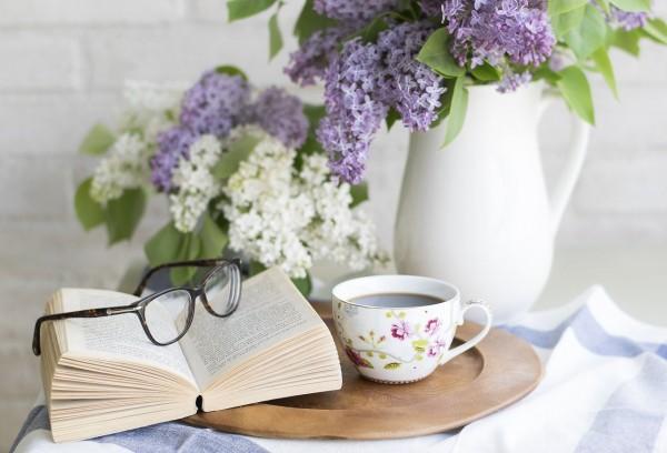 Ilustrasi Sebuah Buku (Sumber : Pixabay)