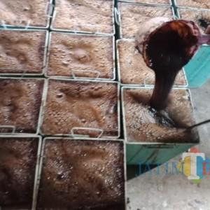 Mengintip Produksi Cincau Hitam di Jombang, Si Hitam yang Diburu Saat Bulan Puasa