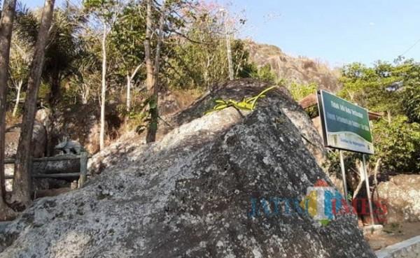 Kampung Pitu (Foto: Suara)