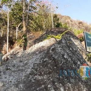 Kampung Pitu, Desa Mistis Lebih Tertutup Dibanding Pemukiman Badui Dalam