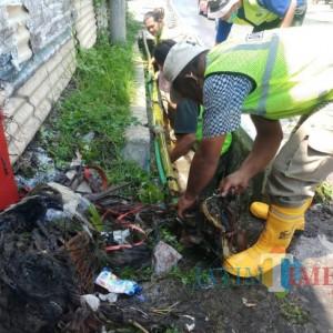 Bikin Geleng Kepala, Satgas DPUPRPKP Temukan Bambu 5 Meter saat Normalisasi Saluran