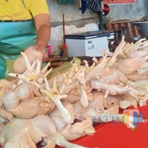 Minggu Pertama Ramadan Penjualan Daging Ayam Menurun