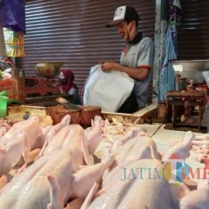 Harga Ayam Potong Rp 40 ribu Perkilo di Pasar Besar Kota Batu