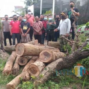 Polisi Blitar Ringkus Pencuri dan Penadah Kayu Sono