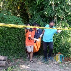Wanita Muda Ditemukan Tewas Terbungkus Karpet di Perkebunan Tebu di Malang