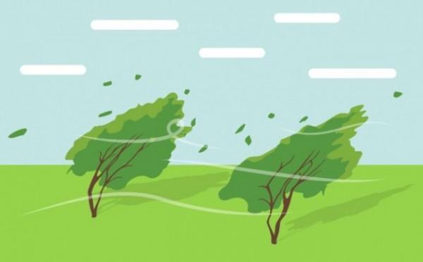 Ilustrasi angin (prfmnews)