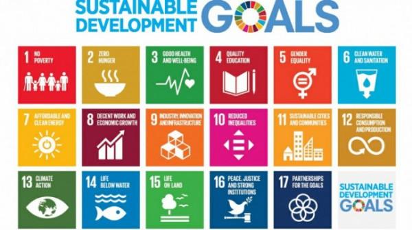SDG's Desa yang ditetapkan pemerintah. (Foto: dok. Google)