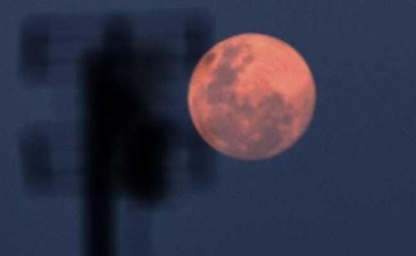 Bulan Purnama Pink Supermoon (Foto: Tempo)