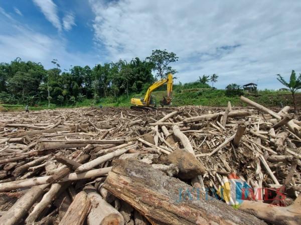 Kondisi batang pohon yang terbawa arus banjir bandang di Sungai Klethek, Kecamatan Ngantang, Kabupaten Malang.