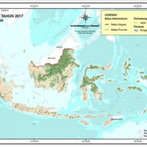 Nasib Hutan di Indonesia Terancam Rusak akibat Keserakahan Pemodal (1)