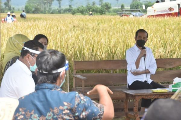 Jokowi saat berdialog dengan petani Kecamatan Pagelaran (foto: Humas Pemkab Malang)