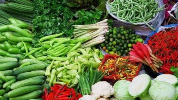 Ilustrasi ketahanan pangan (Foto: Google)