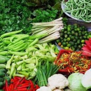 Inovasi Pertanian dan Ketahanan Pangan Solusi Genjot PAD Dibandingkan Sawit