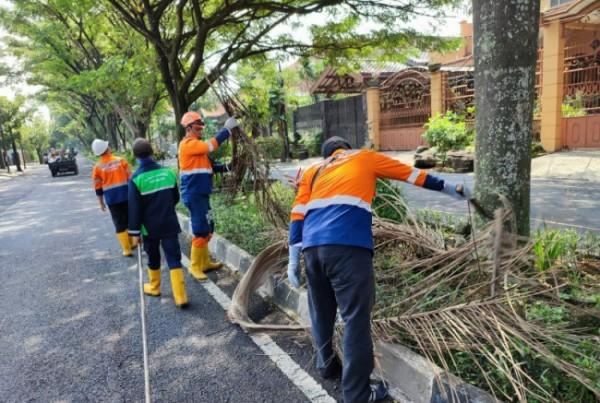 Tim Mobiling DLH Kota Malang giat pembersihan pelapah palem dan dan dahan yang telah mengering di kawasan Sawojajar, Rabu (5/5/2021) (foto: DLHK Kota Malang)