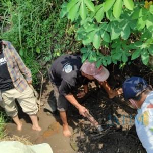 Struktur Batu Bata Kuno Ditemukan di Kota Blitar, BPCB Sebut Peninggalan Aktivitas Masa Lalu