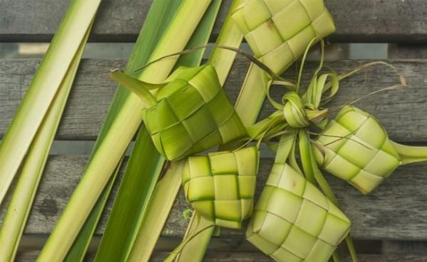 Ketupat (Foto: anosmia.info)