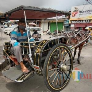 Sepi Pengunjung, Kusir Andalkan Program Delman Gratis Pemkot Batu